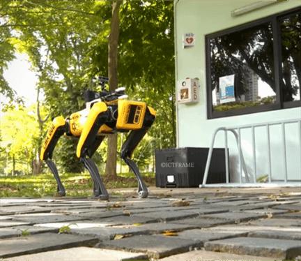 Robot Dog Patrols Singapore Parks to Encourage Social Distancing