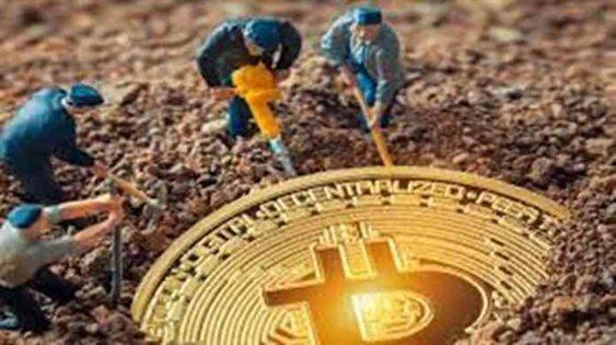 Crypto Mining Farms