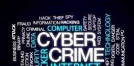 Cyber Fraud Case Study