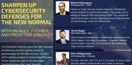 Cybersecurity Defenses