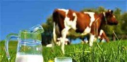 Nepal Dairy Industry
