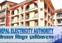 Electricity Authority of Nepal