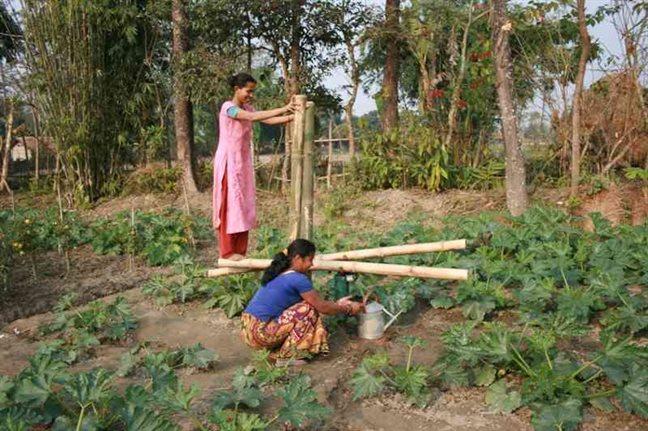 modern farming methods in india
