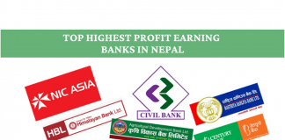 Highest Profit Earning Banks in Nepal