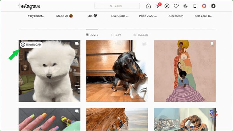 Instagram Photos in Bulk