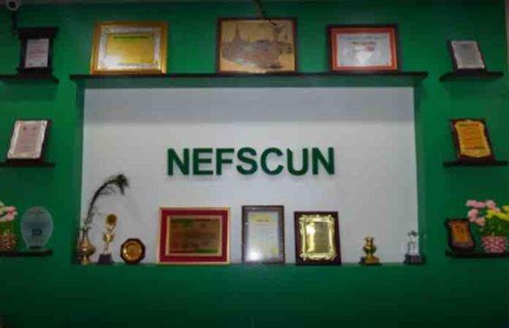NEFSCUN Banner