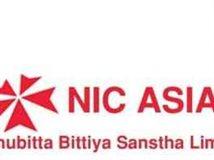 Laghubitta Bittiya Sanstha