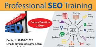 Professional SEO TRAINING IN NEPAL