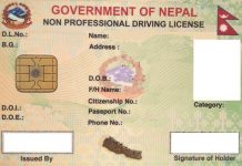 Smart-driving-licence