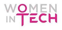 Women-led Information Technology Organizations in Profit